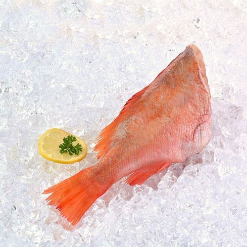 Obrázek z Redfish, rotbarsch - mořský okouník 1 ks