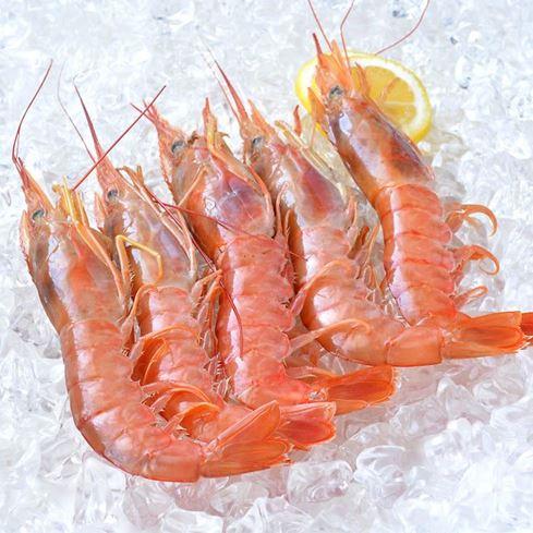 Obrázek z Krevety celé, na moři zmrazené, vel. 10-20, 500g
